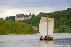 Blick auf Chaumont sur Loire