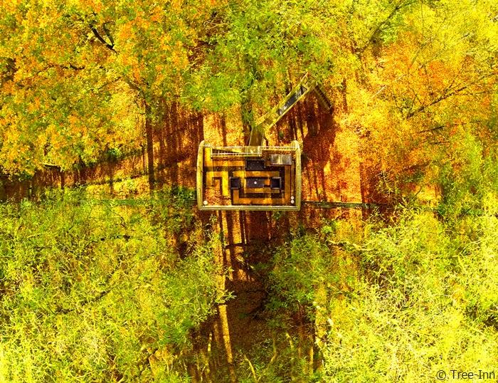 Tree Inn: Wohnen mitten im Wald