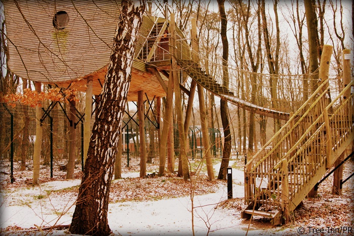 Aufstieg ins Baumhaus im Tree-Inn