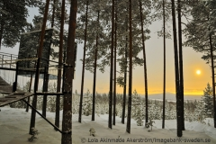 Legende in Nordschweden: das Tree Hotel in Harads