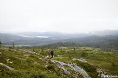 In der Wildnis findet Magnus Nilsson viele Zutaten