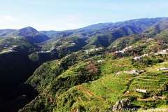Landschaft auf La Palma