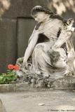 Romantik auf dem Friedhof Montmartre