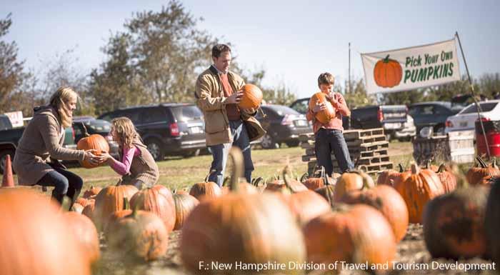 Kürbisfest auf der Applecrest Farm in New Hampshire