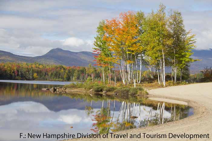 Bunte Bäume im Jericho Mountain State Park in New Hampshire (New England)