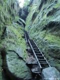 Wanderweg mit steiler Treppe in der Sächsischen Schweiz Foto: Silke Böttcher