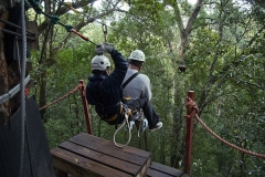 Im Tsitsikamma Forest kann man die Wipfel der Bäume per Seil erkunden