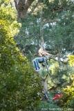 Zipline im Tsitsikamma Forest