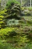 Felsen mit Gesicht in der Sächsischen Schweiz Foto: Silke Böttcher
