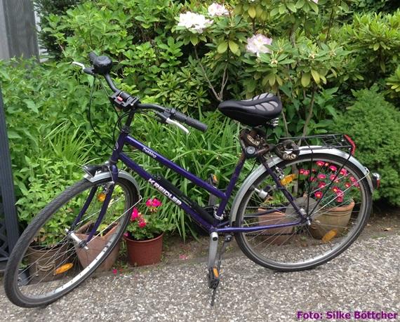 Luxus für jeden Tag: das Fahrrad