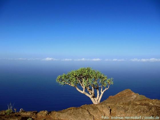 Reif für die Insel: Die schönsten Paradiese