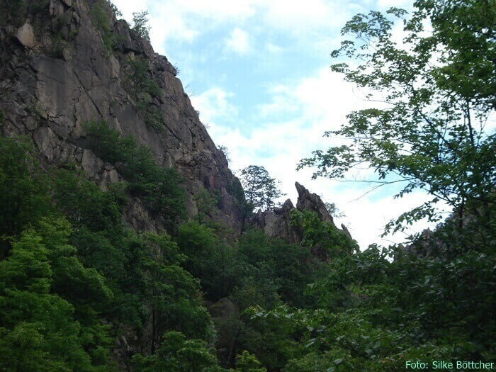 Bodetal: Unterwegs im wilden Harz